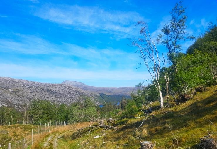 Loch More View.jpg
